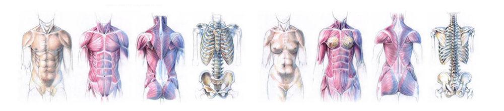 Consulta para Tratamento De Osteopatia em Lisboa